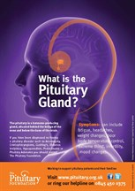 What Is Pit Gland Poster