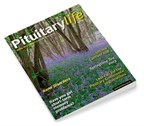 Pituitary Life Spring 2013 Issue 23 Front
