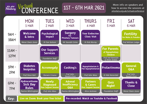 Virtual Conference Programme A4